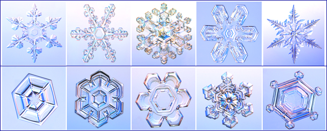 Snow flake pictures provided by www.snowcrystals.com.